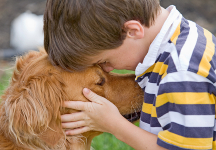 farewelldog_iStock_000009095793XSmall
